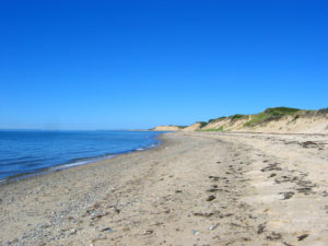 Beach at Cape Cod Bay with a beautiful blue shy and sand dunes